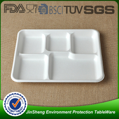 Bagasse Tray2