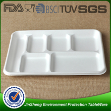 Bagasse Tray1
